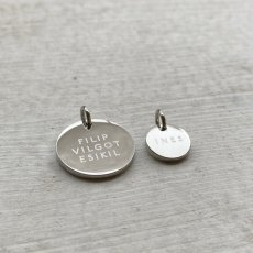 Stainless coin - charm